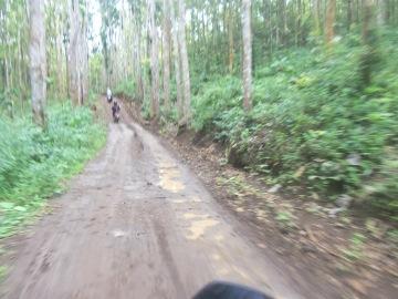 Kondisi jalan menuju Desa Sumbernanas. Ini tergolong yang cukup bagus.