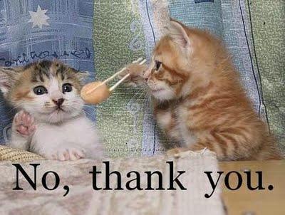 kucing, kalau udah kenyang, gamau makan lagi tuh, masa kita kalah? hehe.  (sumber gambar: kamal-alfasya.blogspot.com)